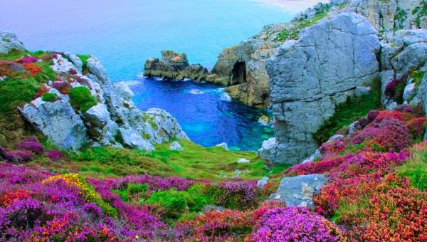Falaises bruyère mer turquoise morgat